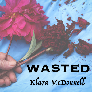 Picture of Single Review - Klara Mc Donnell - Wasted artwork